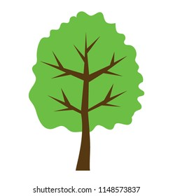 Semi deciduous elm tree flat icon vector