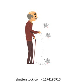 Senior man feeding doves, elderly man cartoon character leading an active lifestyle vector Illustration on a white background
