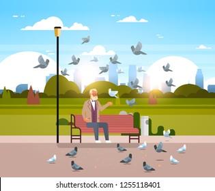 senior man feeding flock of pigeon sitting wooden bench urban city park cityscape background horizontal flat