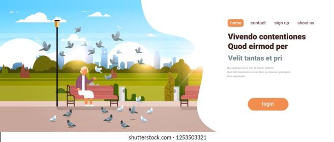 senior woman feeding flock of pigeon sitting wooden bench urban city park cityscape background horizontal copy space flat