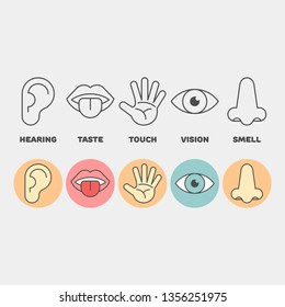 Sense organs flat vector icons. Hearing, smell, touch, vision, taste flat vector icons