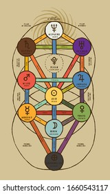 Sephirotic tree in detail an colored. The tree of life Kabbalah symbol. Vintage occult vector illustration.