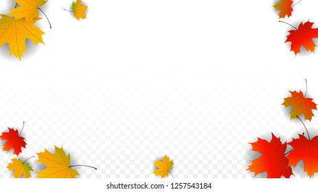 September Vector Background with Golden Falling Leaves. Autumn Illustration with Maple Red, Orange, Yellow Foliage. Isolated Leaf on Transparent Background. Bright Swirl. Suitable for Flyers.