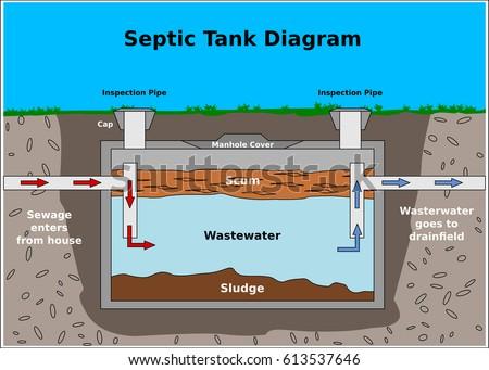 Septic Tank Vector Diagram Vector De Stock Libre De