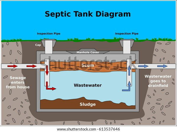 Septic Tank Vector Diagram Stock Vector Royalty Free