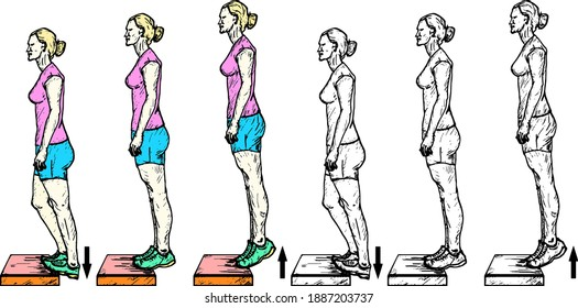 Sequence of a girl doing the eccentric calf raise exercise. Hand drawn vector illustration.