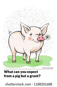 Series of postcards with a piglet. Proverbs and sayings.What can you expect from a pig but a grunt Pig standing on the grass. Piggy is eating a chamomile flower. Hand-drawn. Cartoon. Watercolor style