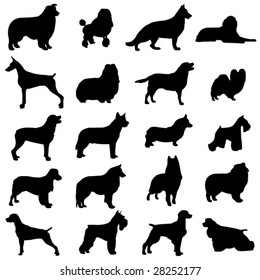 Series of world-famous dogs