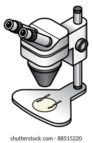 A serious stereo microscope on an adjustable stand.