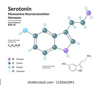 Serotonin. Hormone of Happiness. Monoamine Neurotransmitter. Structural Chemical Molecular Formula and 3d Model. Atoms are Represented as Spheres with Color Coding. Vector Illustration