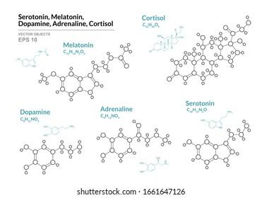 Serotonin, Melatonin,  Dopamine, Adrenaline, Cortisol. Hormones. Structural Chemical Formula and Molecule Model. Line Design. Vector Illustration