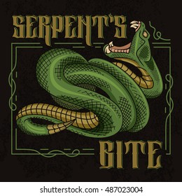 Serpent's bite. Stylish vector illustration of viper snake with designed frame in vintage style.