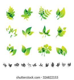 Set of 12 botanical icons, leafs, brunches and floral  silhouettes.
