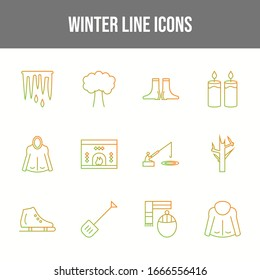 Set of 12 Unique Winter Vector Icons