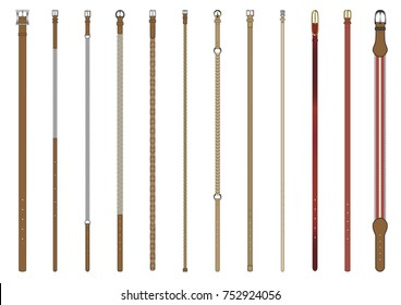Set of 12 woman skinny belts in vector