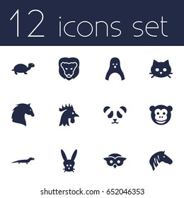 Set Of 12 Zoo Icons Set.Collection Of Bear, Pussy, Ape And Other Elements.
