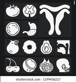 Set of 13 health filled icons such as uterus, salivary glands, pharynx, spinal cord, stomach, avocado, coconut, fig, cherries, tomato, pineapple