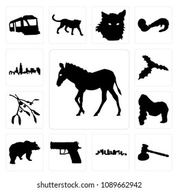 4aeb48a6989e7 Set Of 13 simple editable icons such as zebra outline on white background