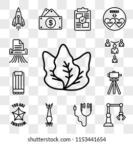 Set Of 13 transparent editable icons such as kale, industry 4.0, earbud, catfish, you are welcome, surveyor, air mattress, mentorship, shding, web ui icon pack, transparency set