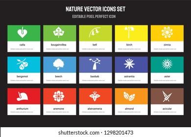 Set of 15 flat nature icons - Calla, Bougainvillea, Alstroemeria, Zinnia, Anthurium, Astrantia, Aster, Almond. Vector illustration isolated on colorful background