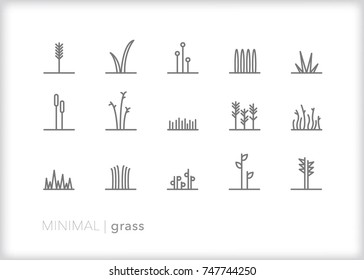 Set of 15 minimal abstract grass line icons showing stalks and blades of growing leaves coming up from the ground in various shapes, sizes and style