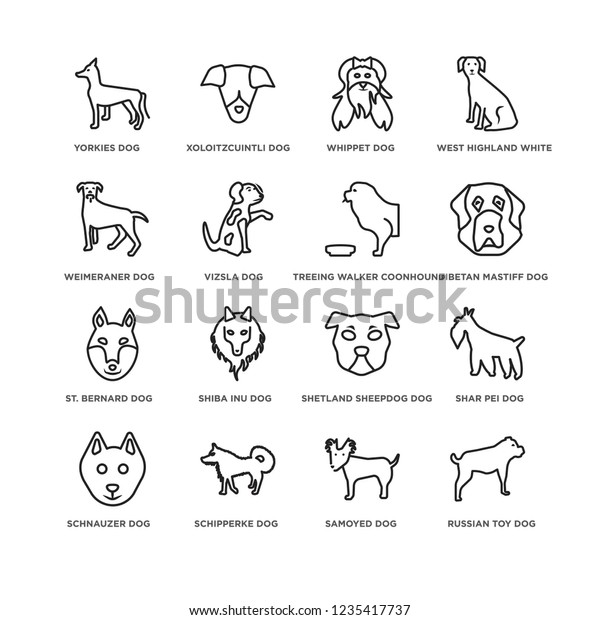 Set 16 Dogs Line Icons Such Stock Vector (Royalty Free) 1235417737