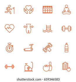 Set Of 16 Fitness Outline Icons Set.Collection Of Pulse, Barbell, Exercise Bike And Other Elements.