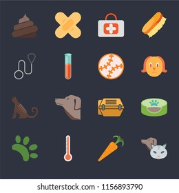 Set Of 16 icons such as Pet, Carrot, Thermometer, Animal, Pet bed, Poop, Leash, Cat, Toy on black background, web UI editable icon pack