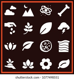 Set of 16 nature filled icons such as plant on a hand, single thing bone, terrain, flower, seeds, solar system, moon, branch with leaves black shape