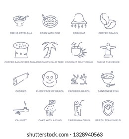 set of 16 thin linear icons such as brazil team shield, caipirinha drink glass of brazil, cake with a flag, calumet, cantonese fish, capoeira brazil dancers, chimp face of brazil from culture