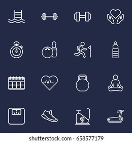 Set Of 16 Training Outline Icons Set.Collection Of Dumbbell, Exercise Bike, Running Track And Other Elements.