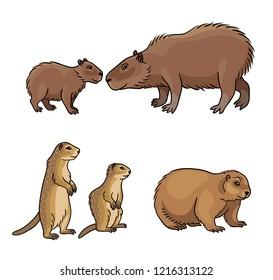 Set #2 of rodents - vector illustration. EPS8
