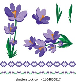 Set of 2 seamless border and 5 Crocus flowers elements, workpiece for your design. Flowers elements and motifs. Decor for textile and print design.Vector.