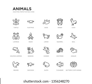 set of 20 line icons such as zander, baboon, dolphin jumping, squirrel, lemur, squid, ladybug, spider, dove, platypus. animals outline thin icons collection. editable 64x64 stroke