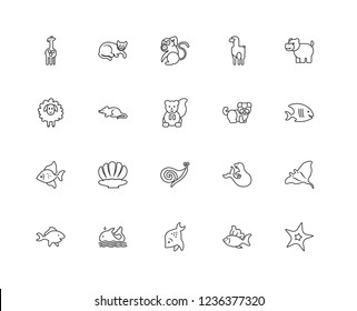 Set Of 20 linear Animals icons such as Starfish, Fish, Whale, Hippopotamus, Bulldog, Seashell, Mouse, Monkey, editable stroke vector icon pack