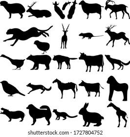 Set of 25 animals. Capybara, Elk, Sheep, Goat, Chick, Cheetah, Antilope, Rodents, Deer, Goose, Bear, Wolf, Fox, Sparrow, Horse, Cow, Gorilla, Hippopotamus, Samoyed, Pacific Fisher, Rabbit, Giraffe.