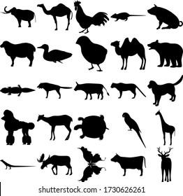Set of 25 animals. Elephant, Rooster, Rat, Pig, Sheep, Duck, Chick, Camel, Bear, Gecko, Wolf, Dog, Poodle, Deer, Turtle, Parrot, Giraffe, Lizard, Moose, Butterfly, Cow, Elk.