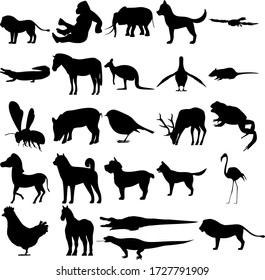 Set of 25 animals. Komodo, Gorilla, Elephant, Dog, Goshawk, Crocodile, Zebra, Kangaroo, Pigeon, Rat, Flying Bee, Pig, Bird, Deer, Toad, Zebra, York, Flamingo, Chicken, Horse, Alligator, Lion.