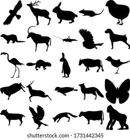 Set of 25 animals. Rabbit, Rat, Chick, Otter, Antelope, Grasshopper, Owl, Dog, Flamingo, Beaver, Hare, Bull, Bird, Sheep, Deer, Seal, Butterfly, Chihuahua, Goshawk, Fox, Cow, Gorilla.