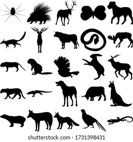 Set of 25 animals. Spider, Porcupine, Butterfly, Numbat, Deer, Snake, Moose, Tiger, Beaver, Owl, Rabbit, Jaguar, Gecko, Dog, Bull, Kangaroo, Polar bear, Jackal, Fox, Pheasant, Lizard.
