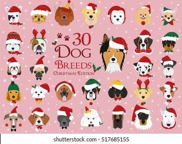 Set of 30 dog breeds with Christmas and winter themes
