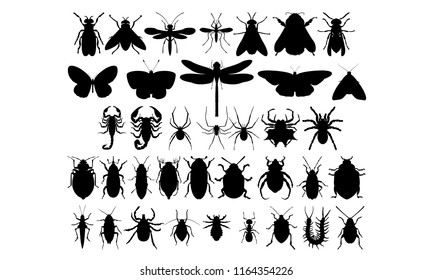 Set of 37 insects (flying, crawling, dangerous, harmless, pests, bloodsucking, fly, butterflies, scorpions, spiders, beetles) Vector black silhouettes