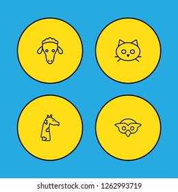 Set of 4 animal icons line style set. Collection of tomcat, merinos, night fowl and other elements.