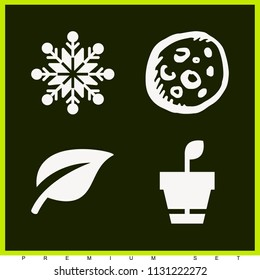 Set of 4 nature filled icons such as moon, tree leaf, plant