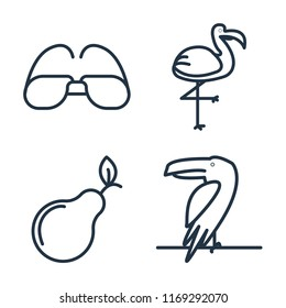 Set of 4 vector icons such as Sunglasses, Flamingo, Pear, Toucan, web UI editable icon pack, pixel perfect