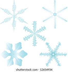 Set of 5 highly detailed and editable snow flakes. Colors can easily be changed.