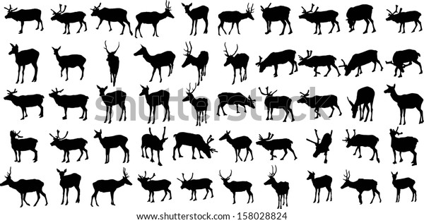 Set 50 Vector Silhouettes Deers Stock Vector (Royalty Free