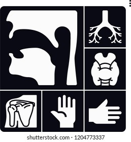 Set of 6 body filled icons such as thyroid gland, pharynx, bronchi, shoulder