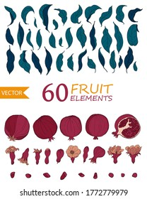 Set of 60 Pomegranate elements, flowers. seeds and leaves. Organic food vector. Hand drawn fruit style. Design for cosmetics, spa, pomegranate juice, health care products, perfume.