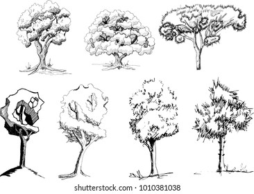 Set 7 hand draw sketch trees   isolated  on white backgroundv